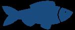 Fisch_blau